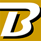 Bonneville Brackets